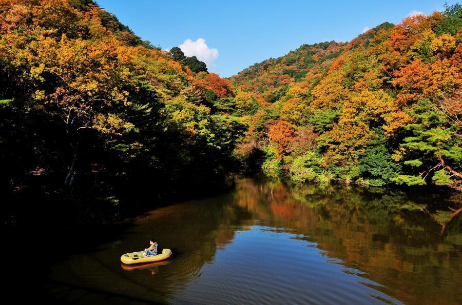 関町観音山公園1