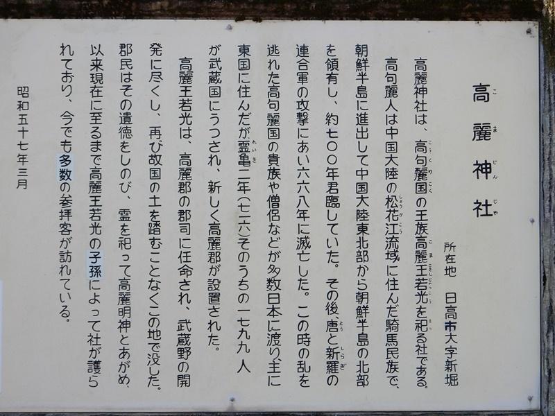 DSCN5017.jpg