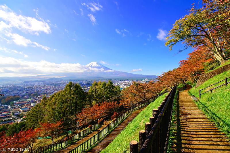 絶景探しの旅 - 0761 富士山を望む秋色の遊歩道 (新倉山浅間公園/山梨県 富士吉田市)