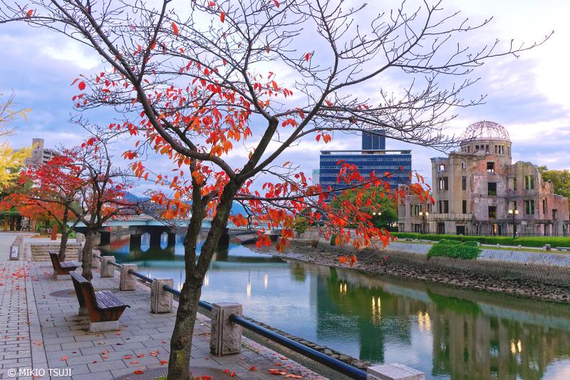 絶景探しの旅 - 0770 秋の島平和記念公園の朝 (広島市)