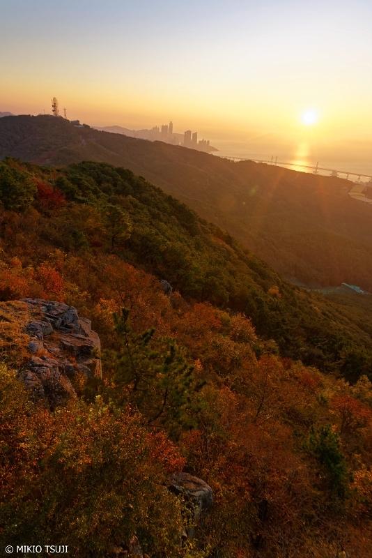 絶景探しの旅 - 0777 秋色に輝く朝 (荒嶺山/釜山広域市 蓮堤区)
