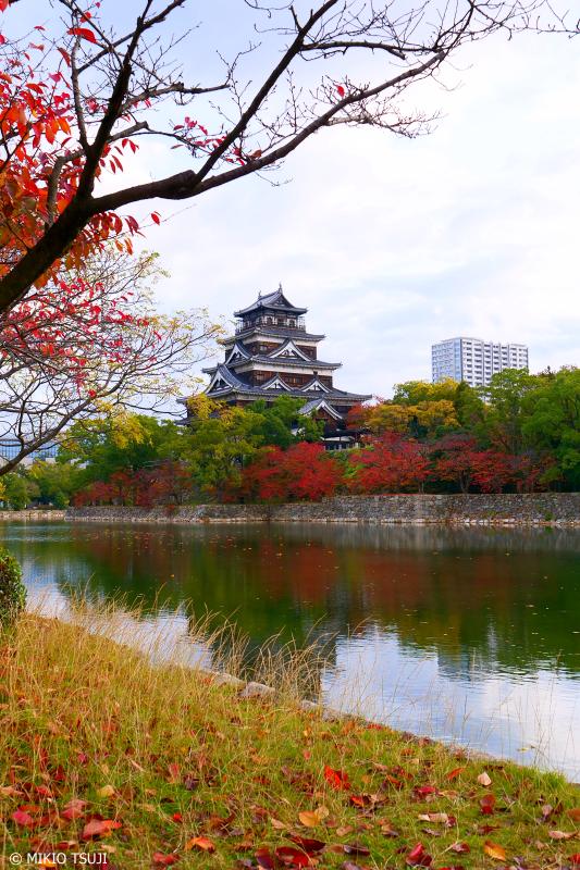 絶景探しの旅 - 0778 雨上がりの落ち葉と広島城 (広島市 中区)
