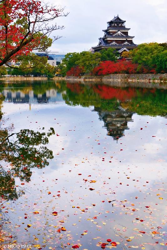 絶景探しの旅 - 0779 落ち葉浮かぶ広島城外堀 (広島市 中区)