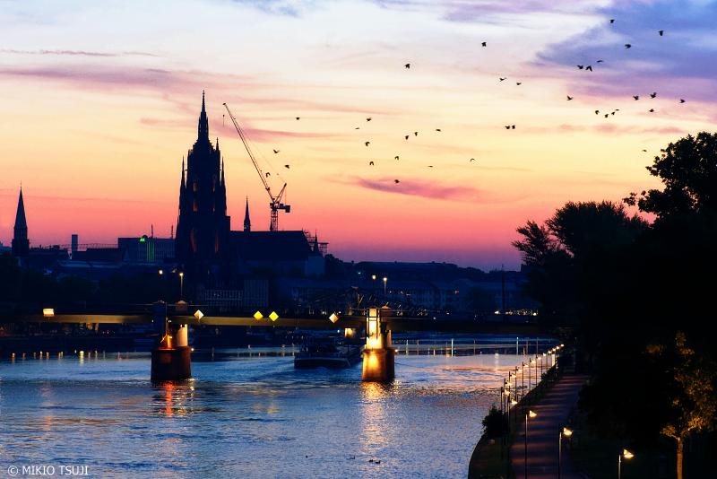 絶景探しの旅 - 0825 鳥舞う夜明けのマイン川 (ドイツ フランクフルト)