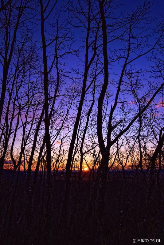 絶景探しの旅 - 0830 湿原の夕暮れ時 (釧路湿原/北海道 釧路町)