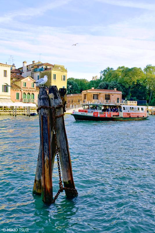 絶景探しの旅 - 0866 運河とカモメ (イタリア ベネチア)