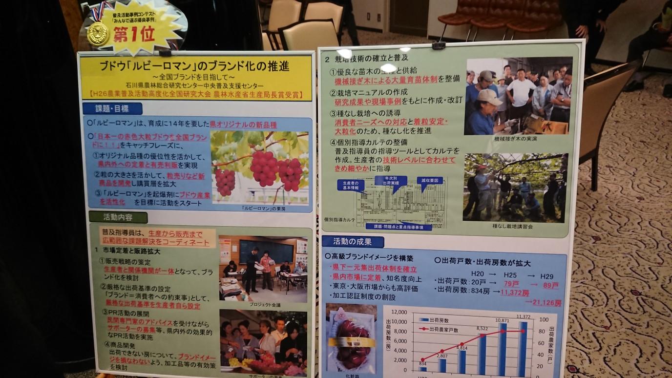 moblog_a6201197.jpg